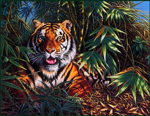 Джоан Шаррок. Тигр