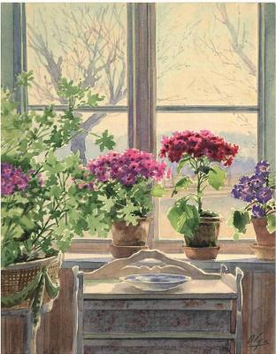 Olga Alexandrovna Romanova. Primrose in the window - Knudsminde, Denmark