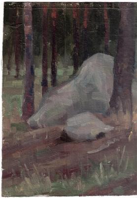 Аркадий Павлович Лаптев. Камень