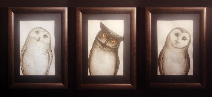 Peter Sergeevich Kucherenko. Owls