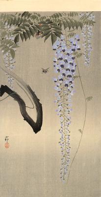 Ohara Koson. Wisteria and bee