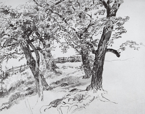 Ivan Ivanovich Shishkin. Trees