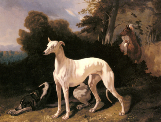 Альфред Дедрё. Собаки