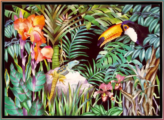 Джуди Вайс. Джуди Вайс. Тропический лес для детей 06