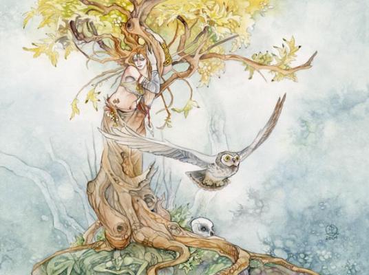 Стефани Лоу. Форма дерева