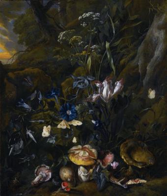 Отто Марсеус ван Скрик. Лесной натюрморт с цветами, грибами и бабочками