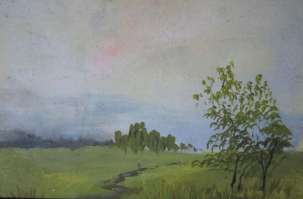 Pavel Markovich Osherov. Field