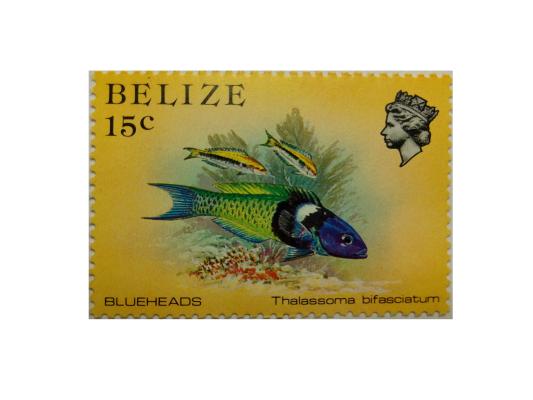 """Arthur Gabdrupes. """"Image"""": """"Brand""""; Mail: Belize. """"Archiv"""" (v) (2)"""