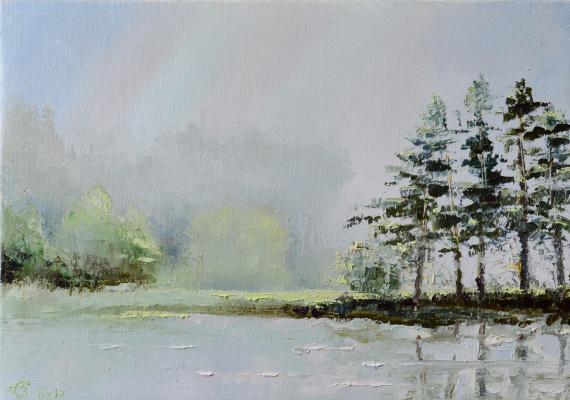 Vadim Anatolyevich Stolyarov. Soaring pine trees