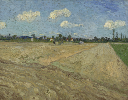 Vincent van Gogh. Plowed fields