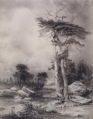 Alexey The Kondratyevich Savrasov. Old pine