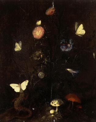 Кристиан Янс ван Стрип. Цветы, ящерица и бабочки