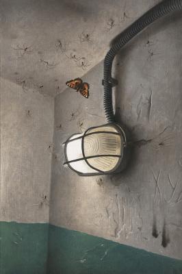 Kos1604. Spiders