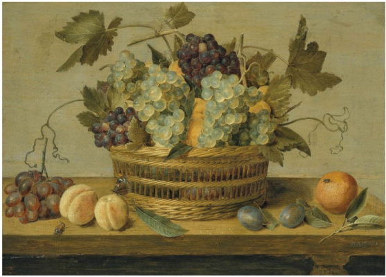 Якоб ван Хюльсдонк. Нектарины и виноград в корзине на столе со сливами, апельсинами, бабочкой и жуком
