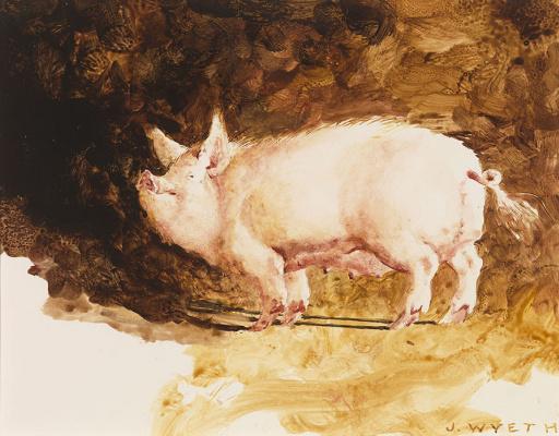 Джейми Уайет. Свинья