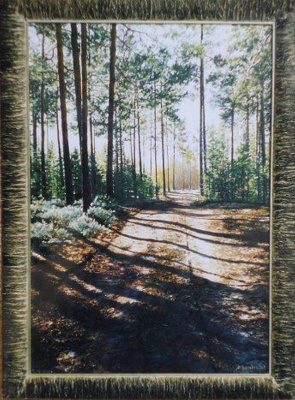 Michael Besedin. Road in the forest.
