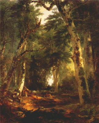 Asher Brown Durand. In the woods