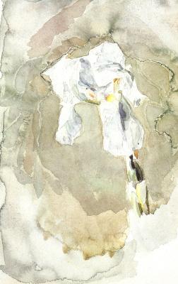 Mikhail Vrubel. White iris