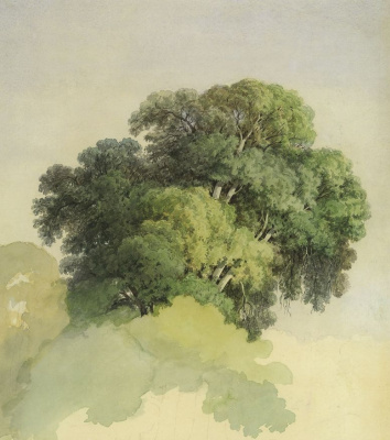 Фёдор Александрович Васильев. Кроны деревьев