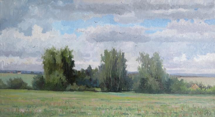 Ольга Акрилова. Field