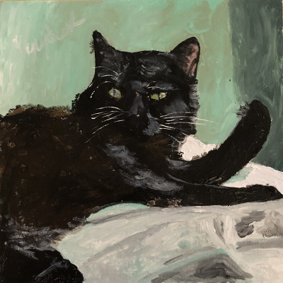 Nikita Chugunov. Black cat in green room