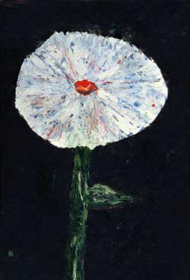 Vladimir Igorevich Yakovlev. White flower on black background