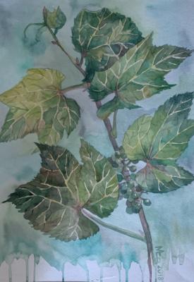 Svetlana Valentinovna Malysheva. Grape branch