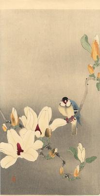 Ohara Koson. White flowers