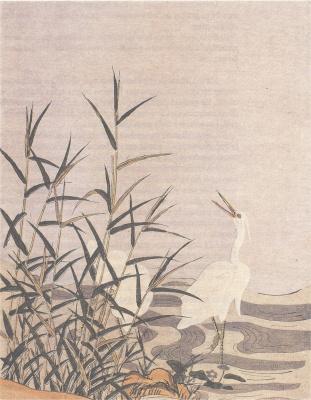 Судзуки Харунобу. Цапли и тростник