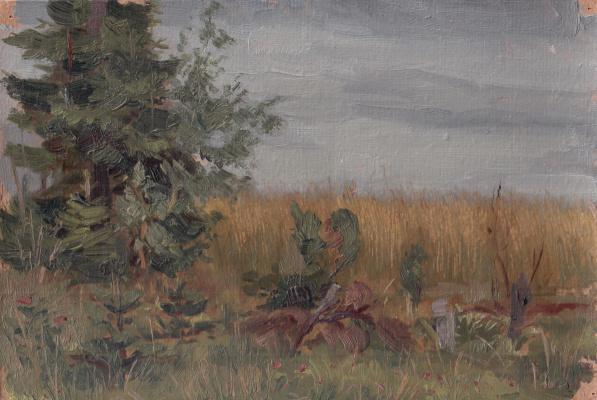 Arkady Pavlovich Laptev. Overcast