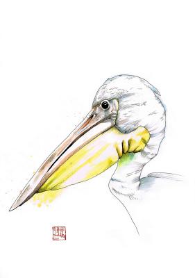Yuri Sergeevich Shachnev. Pelican