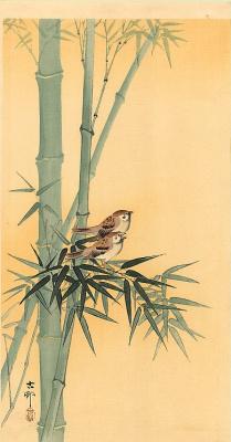 Охара Косон. Птицы 82