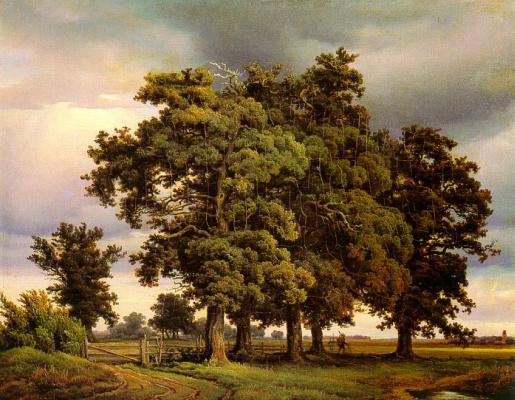 Георг Генрих Крола. Старое дерево