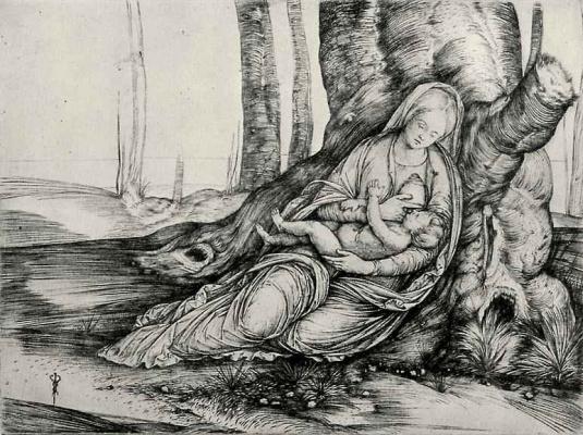 Якопо де Барбари. Мадонна с младенцем