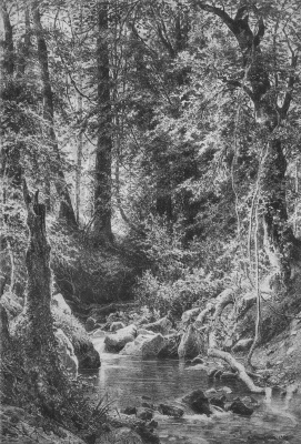 Ivan Ivanovich Shishkin. Forest stream