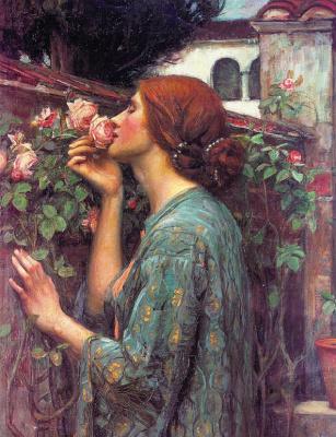 Моя сладкая роза