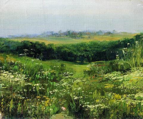 Efim Efimovich Volkov. Flower field