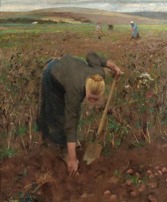 George Clausen. Field near Pas-de-Calais (Harvesting potatoes)