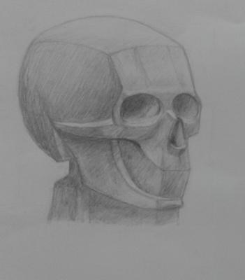 Zina Vladimirovna Parisva. Skull No. 1