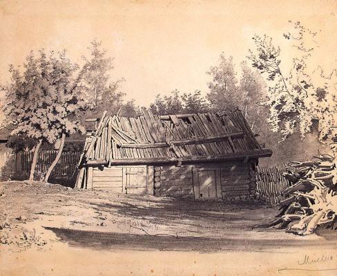 Luigi Premazzi. A ramshackle shed in the garden