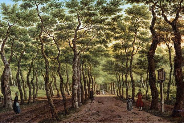 Ла Фаркуу. В лесу в Гааге