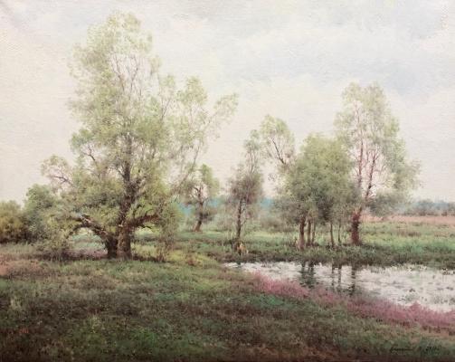 Vasily Ivanovich Gribennikov. Willows