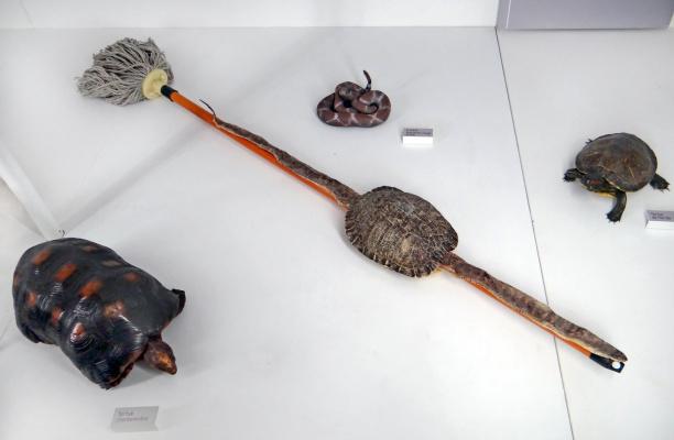Huang Yongping. Broom, rattlesnake and turtle