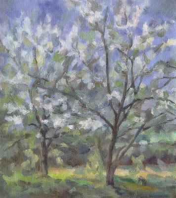 """Andrei Ivanovich Borisov. Study for the picture """"Cherry blossom"""""""