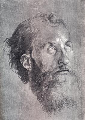 Head of an Apostle looking upward
