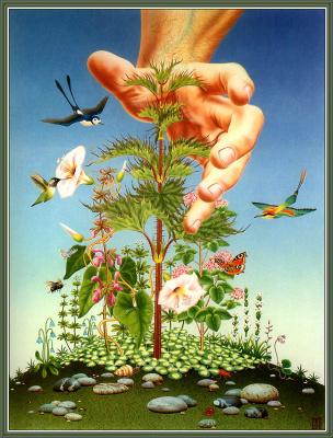 Майкл Ли. Растение