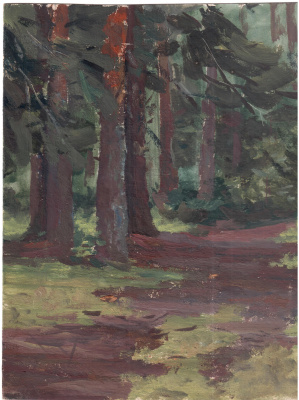 Arkady Pavlovich Laptev. In the pine forest