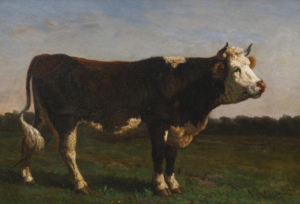 Rose Bonhur. The king of the herd