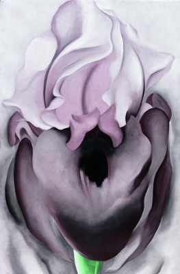 Georgia O'Keeffe. Black iris VI