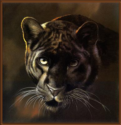 Поллианна Пикеринг. Большие кошки 11